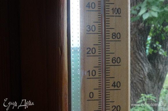 В подтверждение вышесказанного: термометр на западной стороне дома. Время — 15:37, температура — 39°C в тени. Самое время приступить к дегустации бургеров.