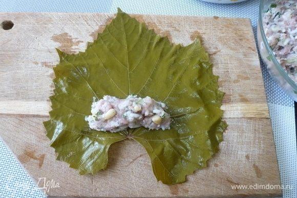 Положить на край листа немного фарша (1–2 ч. л.) и завернуть фарш в виноградные листья.