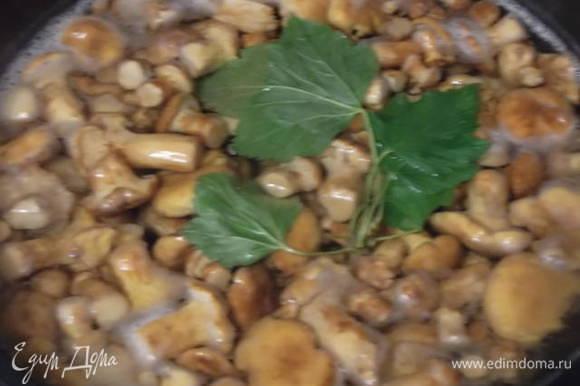 Отварить грибы в соленой воде 20 минут. Я бросаю листики смородины для аромата.