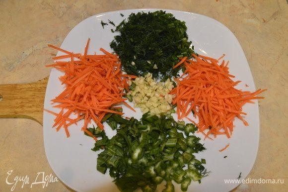 Пока фасоль готовится, нашинковать морковь, нарезать сельдерей, чеснок, и укроп.