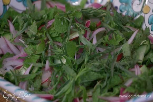 В большое блюдо выложить огурцы, редис, слегка отжатый от уксуса лук и измельченную зелень.