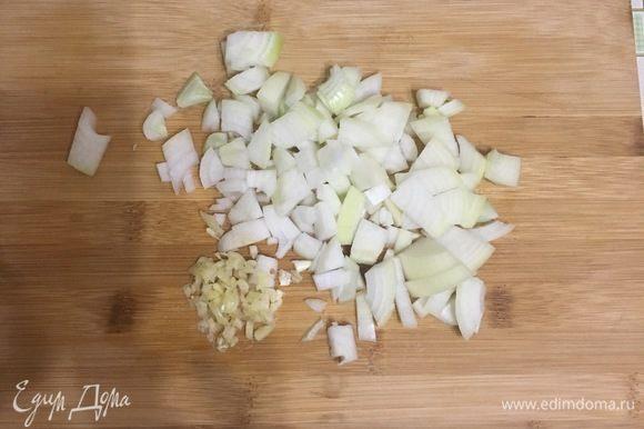 Очистите и мелко нарежьте лук и чеснок.
