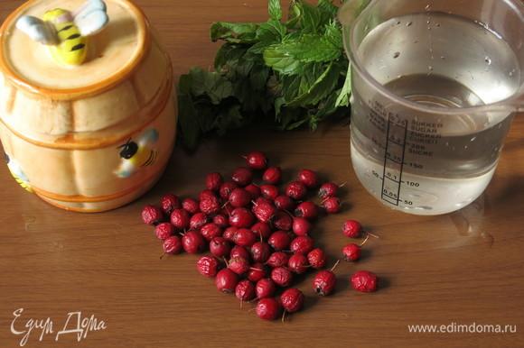 Подготовим продукты — боярышник, мяту, мед и воду.