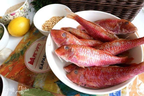 Очистить рыбу от чешуи, выпотрошить, срезать плавники, хорошо промыть, обсушить.