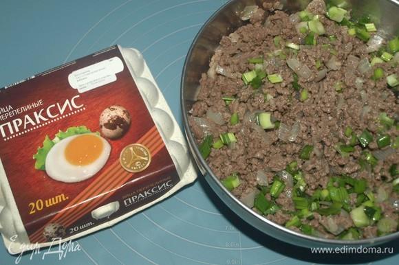 Готовую начинку перекладываем в миску. Даем остыть. Зеленый лук порубить и добавить к фаршу. Перемешать. Если необходимо, то добавить соль, перец.