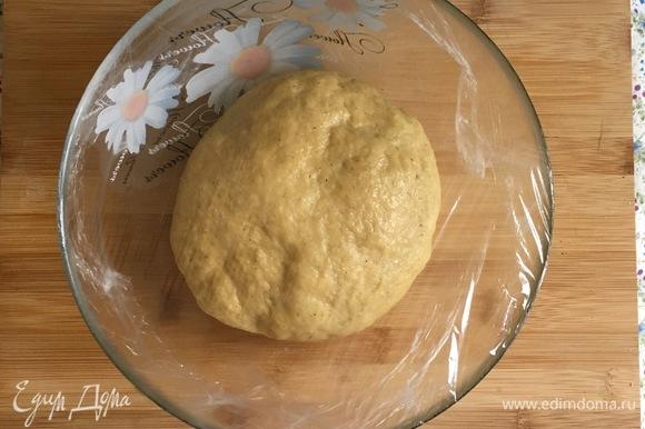Готовое тесто скруглить, обмазать сливочным маслом и положить в миску, смазанную сливочным маслом. Накрыть пищевой пленкой и поставить тесто подходить, в теплое место на 1–1,5 часа.