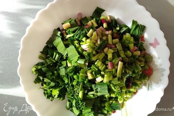 Приготовить начинку: вымытую зелень нарезать. Если вы по каким-то причинам не едите черемшу, просто увеличьте количество другой зелени. Можно добавить лук-порей.