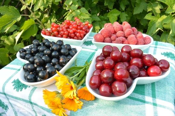 Скоро лето — будет море ягод, будем варить компоты и наслаждаться. Главное, чтобы был прекрасный помощник — фильтр для воды «АКВАФОР».