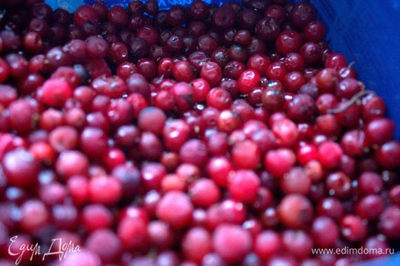 Из добавок берем любые ягоды по сезону или из заморозки.