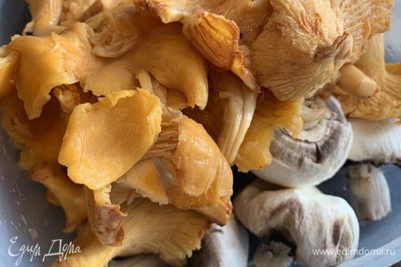 Переберите грибы, хорошо промойте и нарежьте.
