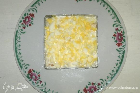 Следующим слоем выложить половину яиц.
