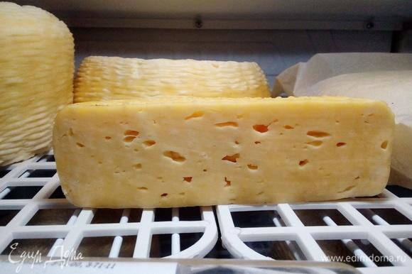 Или маленькой. Но размер сыра на вкус не влияет. На вкус влияют только сроки созревания и правильность вызревания сыра. Размер сырной головки влияет только на структуру продукта. Чем больше головка сыра, тем нежнее его структура. Вот так я делаю качотту. Рецепт уже проверенный, и точно все получается идеально (но я твердо уверена в качестве молока, это важно!). Первая партия моих качотт, приготовленных именно так, уже разошлась. Всем моим покупателям очень понравился сыр, и я с ними солидарна. Выход сыра качотта у меня — 1 200 г из 10 л молока. Но молоко жирное и практически цельное, не считая того, что отбирается 0,5 стакана верхних сливок. Качотта действительно получается невероятно нежной и очень сливочной. Надеюсь, что мой рецепт кому-нибудь понравится, как и сам сыр в результате. Спасибо за внимание!