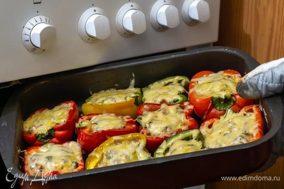 Выпекайте фаршированные перцы в предварительно разогретой до 180°C духовке в течение 40 минут. Затем достаньте форму с перцами и сверху посыпьте их тертым сыром. Поставьте блюдо в духовку еще на 20 минут до расплавления сыра и образования золотистой корочки.