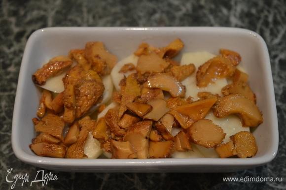 На картофель — лисички.