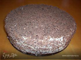 Тортик из медового бисквита