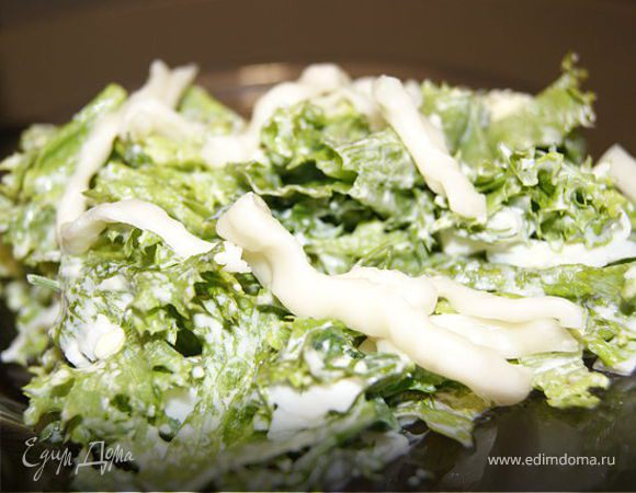 Салат из листьев салата с сыром Сулугуни
