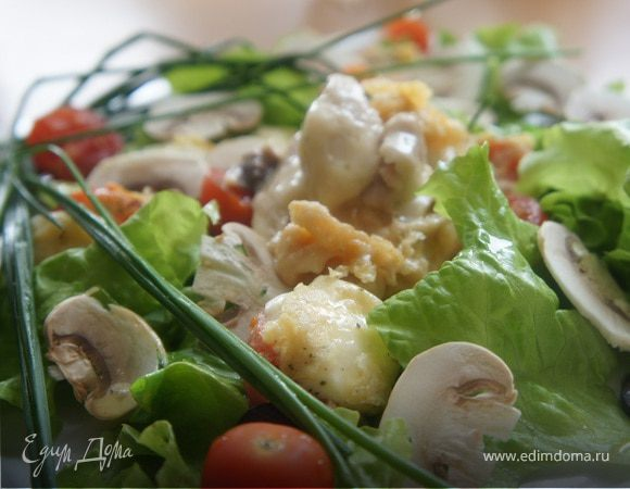 Салат с цыпленком, обжаренным пармеджано, черри и моцареллой