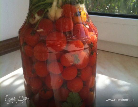 Малосольные помидорчики 3-х дневки
