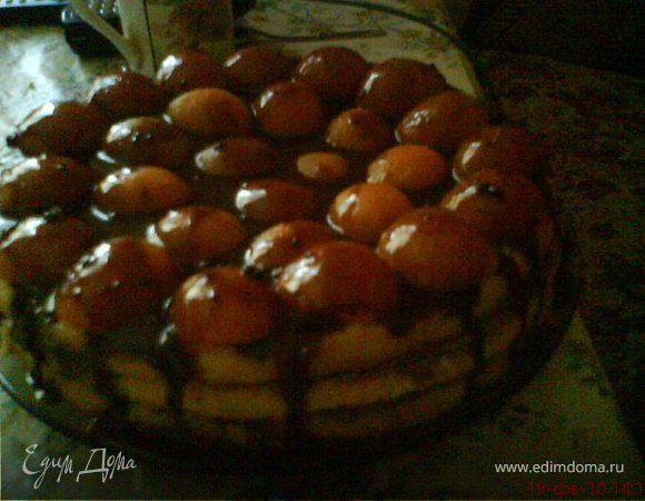 Бисквитный абрикосовый торт в шоколаде.