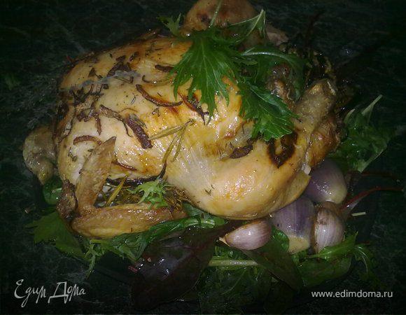 Курица с баклажанами и луком