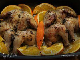 Цыплята, запеченные с апельсинами и орегано