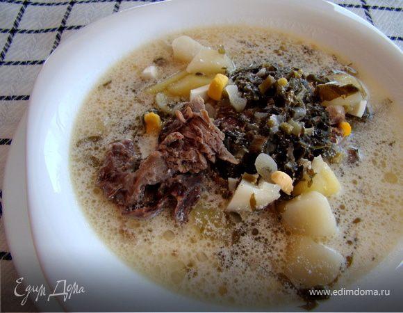 Зеленый борщ, или Суп со щавлем
