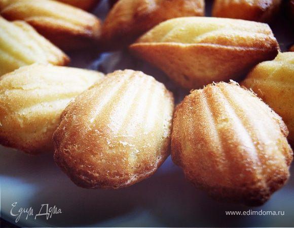 мадленки рецепт печенья на основе молока