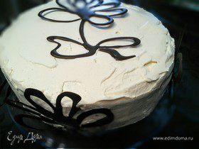 Торт «Шоколадный мачо»