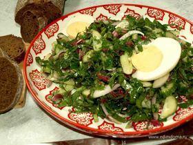 Салат из фенхеля и свекольных листьев