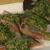 Сельдь пряного посола под горчичным соусом
