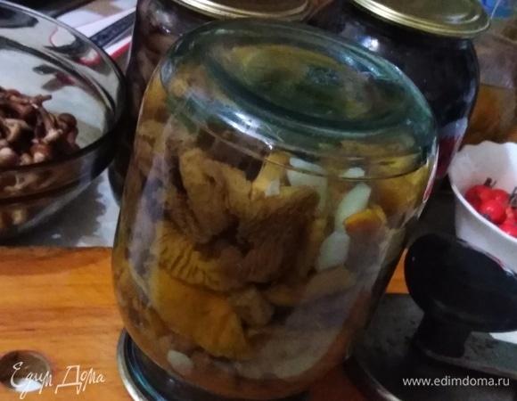 Соленые лисички со смородиновым листом