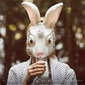 Rabbit Heart :3