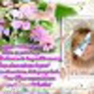 эльфира-альфира равилова-ганиева